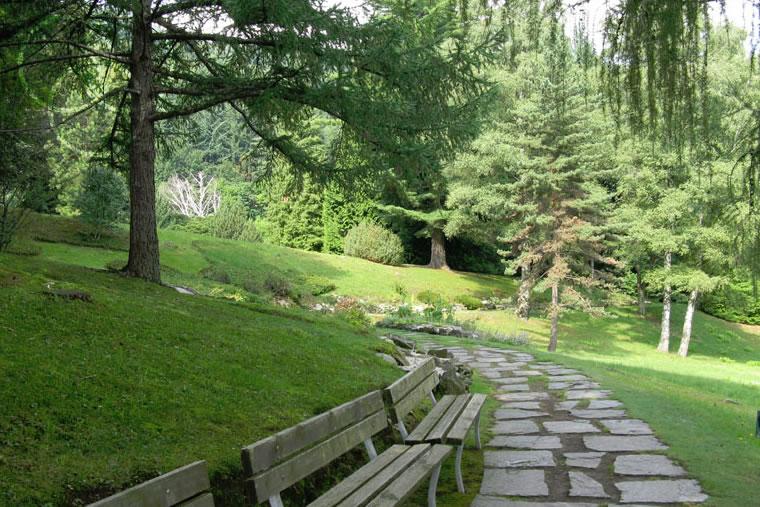 Giardino Alpinia Gingese